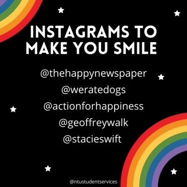 Instagrams to make you smile